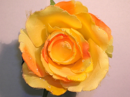 Fake_dewy_rose_1